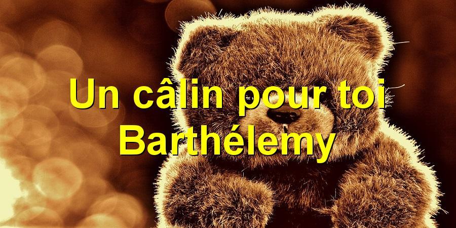 Un câlin pour toi Barthélemy