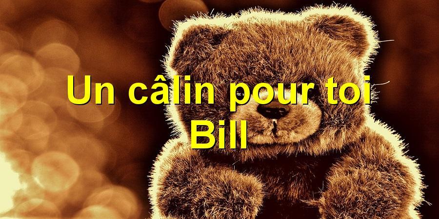 Un câlin pour toi Bill