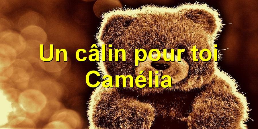 Un câlin pour toi Camélia