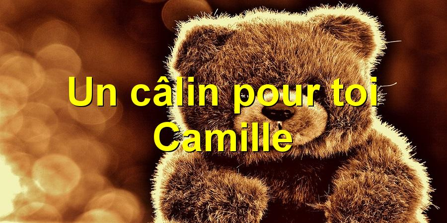 Un câlin pour toi Camille