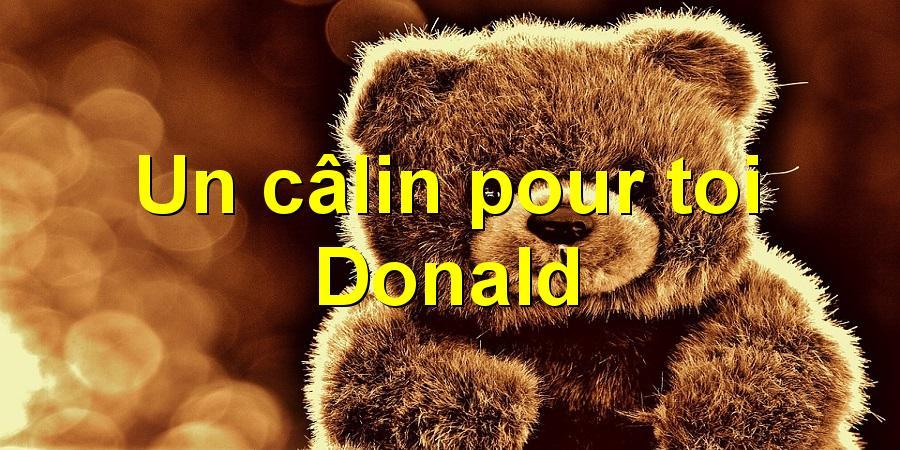 Un câlin pour toi Donald