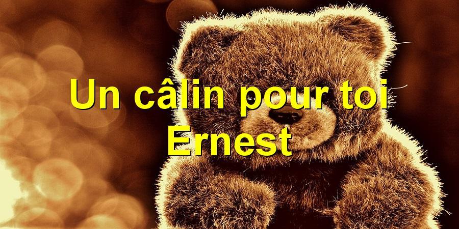 Un câlin pour toi Ernest