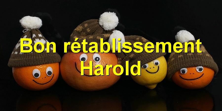 Bon rétablissement Harold
