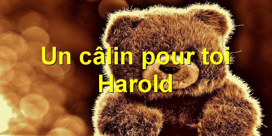 Un câlin pour toi Harold