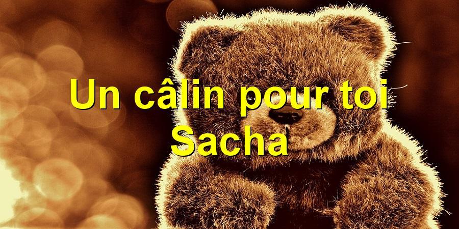 Un câlin pour toi Sacha