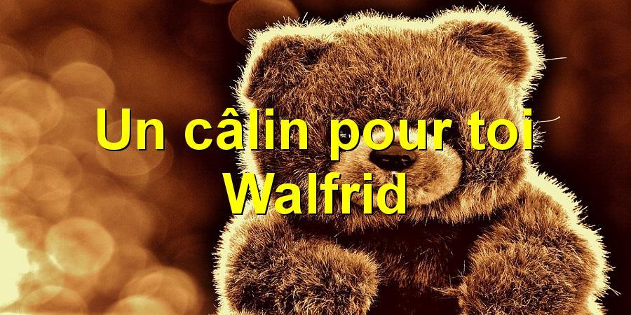 Un câlin pour toi Walfrid