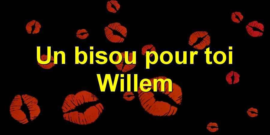 Un bisou pour toi Willem