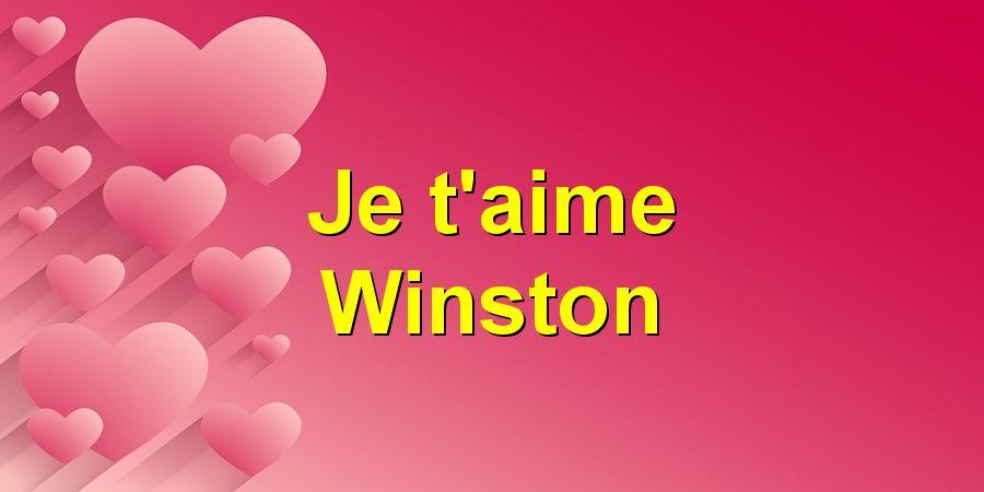 Je t'aime Winston