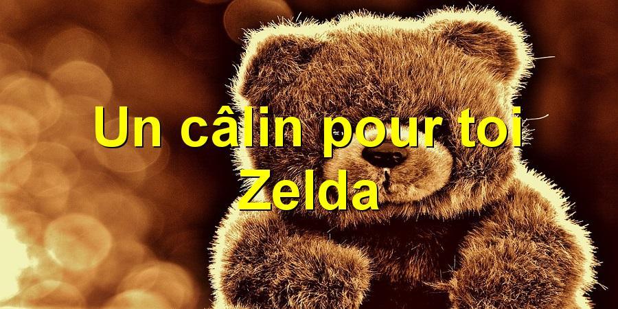 Un câlin pour toi Zelda